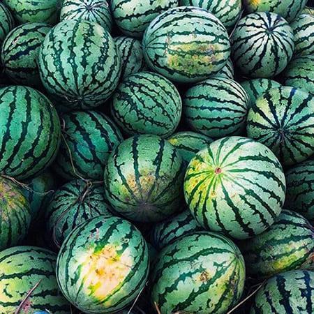 Как применять органическое удобрение Гумат Калия в процессе выращивания основных сельскохозяйственных культур 1